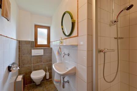 German Bathroom Fixtures... Toilets with Ledges?