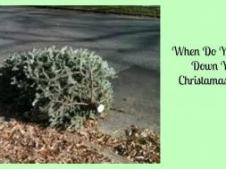 when-do-you-take-down-your-christmas-tree-1-1024×538