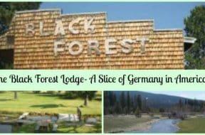 black forest lodge 2