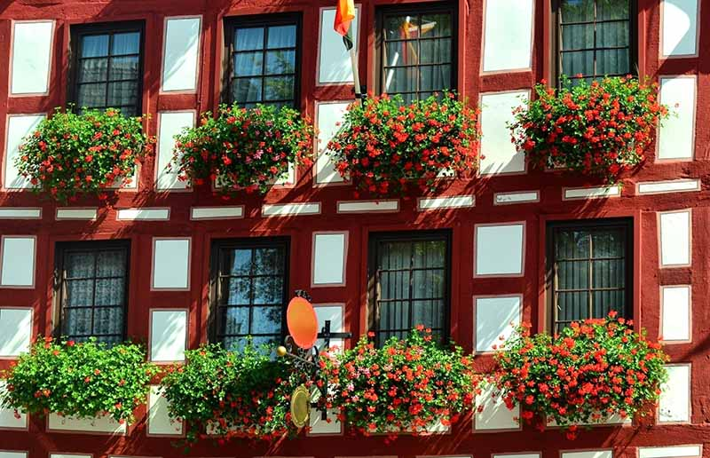 What Makes Germany Special to Me- And Why I Keep Going Back!
