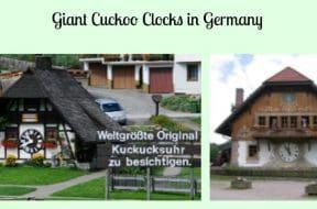 Giant Cuckoo Clocks Germany 1