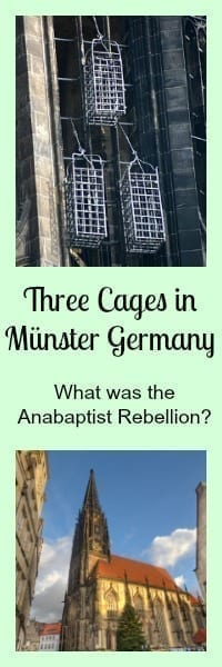 cages munster germany