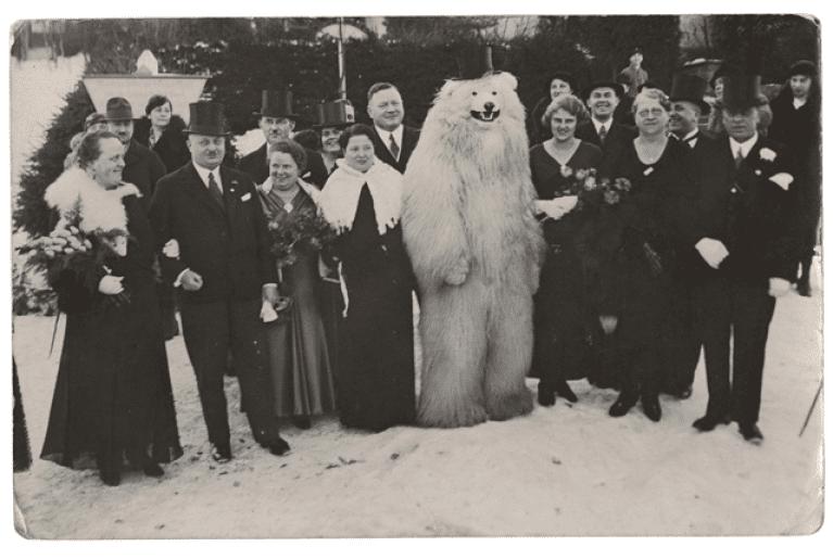 polar bear photos germany