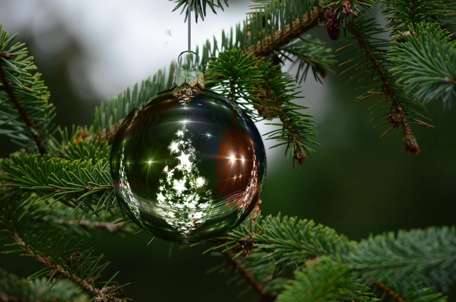 Where did the Christmas Tree Originate? In Germany of Course!