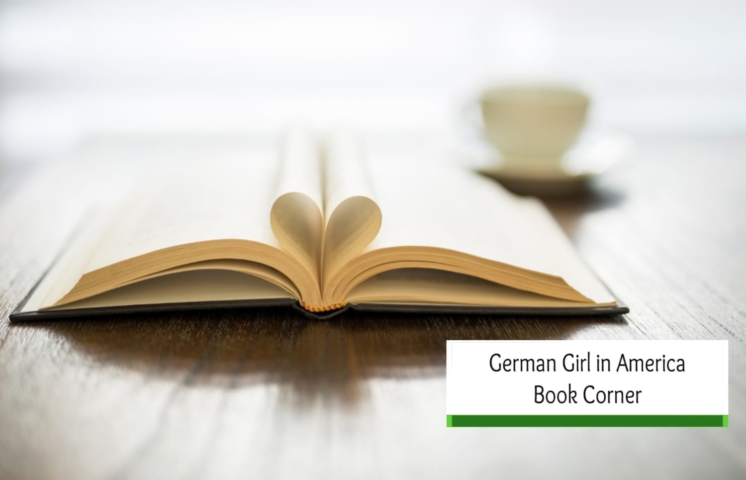German Girl in America Book Corner -Find your next Favorite Book!