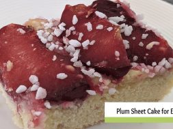 plum cake everyday