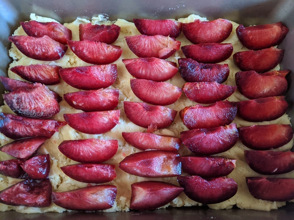 german plum sheet cake recipe