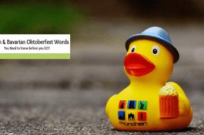 german oktoberfest Words
