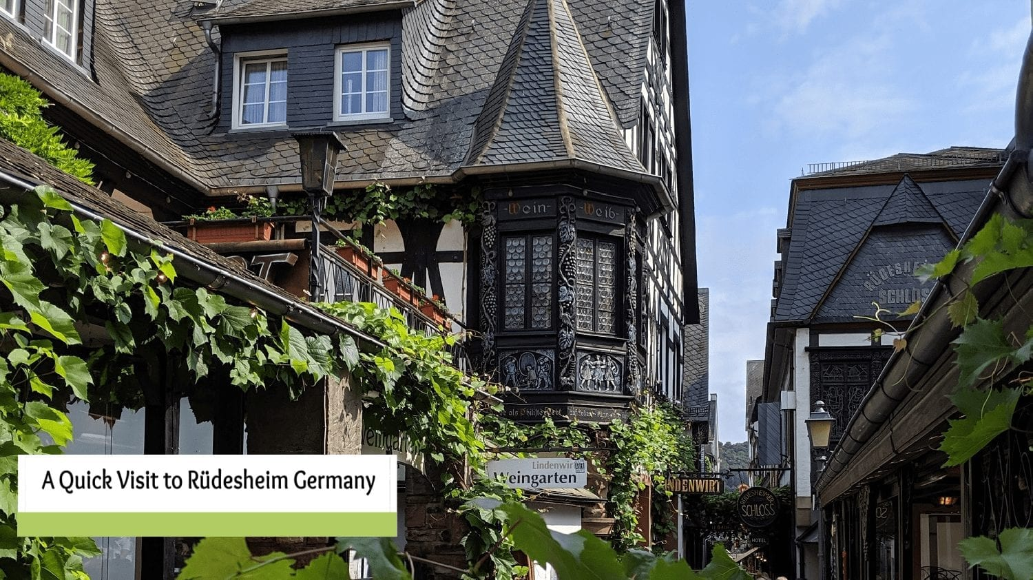 Our Visit to Ruedesheim Germany- A Day isn't Enough