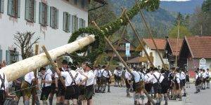 What is Maifest? What is a Maibaum? See How Germany Celebrates May Day!