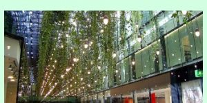 Shopping Malls in Germany- Find Everything You Need, and a Few Things You Don't