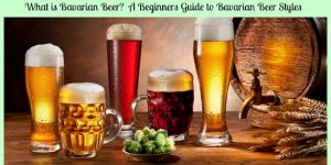 What is Bavarian Beer?  A Beginners Guide to Bavarian Beer Styles