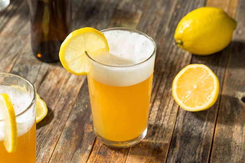 what is a radler